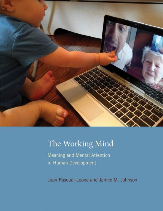 https://mitpress.mit.edu/books/working-mind